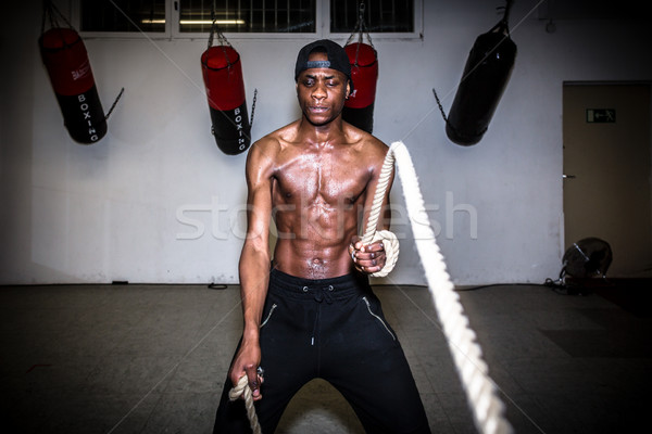 Portrait of young determined man waving battle ropes during high Stock photo © Kzenon