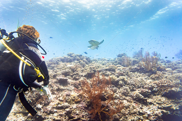 Tourist diving at coral reef and watching Green sea turtle Stock photo © Kzenon