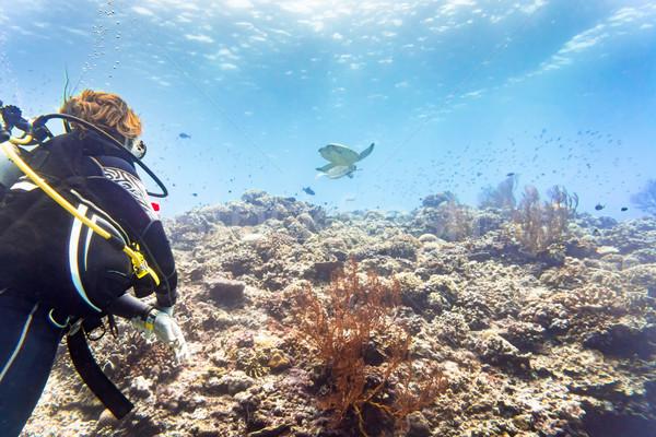 Turista búvárkodik korallzátony néz zöld tenger Stock fotó © Kzenon