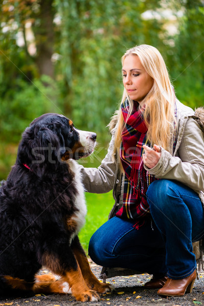 Frau Fuß Hund fallen Park Gras Stock foto © Kzenon