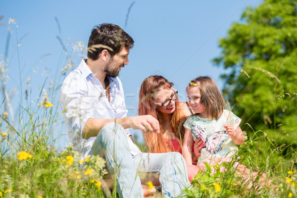 Stock photo: Family playing with wildflowers on meadow