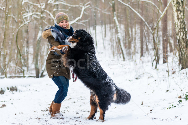 Dog hugging his mom on a winter day with snow Stock photo © Kzenon