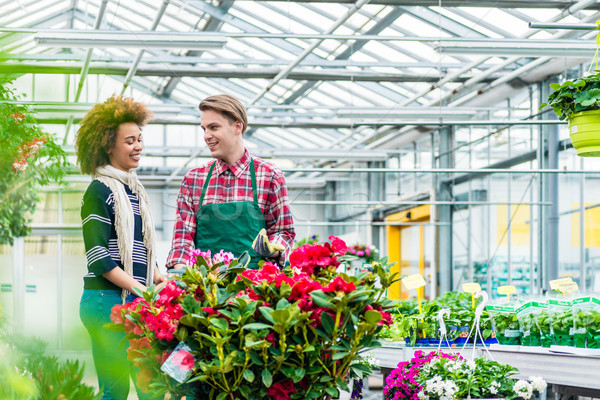Young woman talking with his friend at his workplace in the flower shop Stock photo © Kzenon