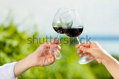 Pár iszik bor tó nyár boldog Stock fotó © Kzenon