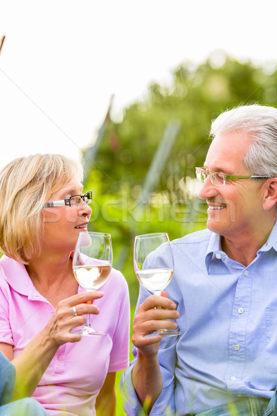 Foto stock: Feliz · piquenique · potável · vinho · casal · de · idosos