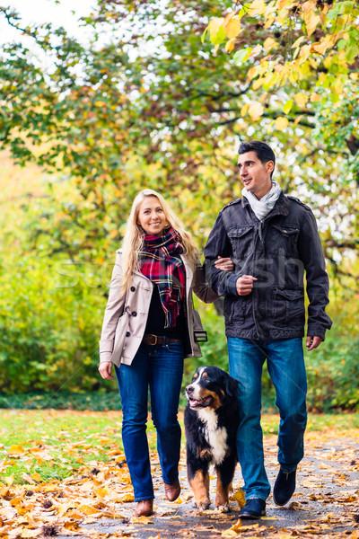 Foto stock: Mujer · hombre · perro · otono · caminata · camino