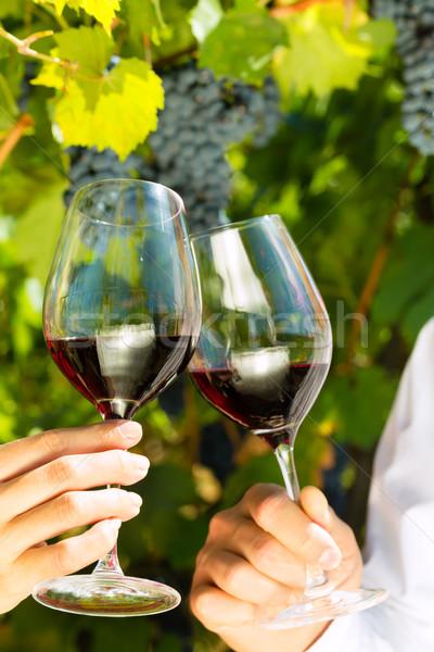 Woman and man in vineyard drinking wine Stock photo © Kzenon