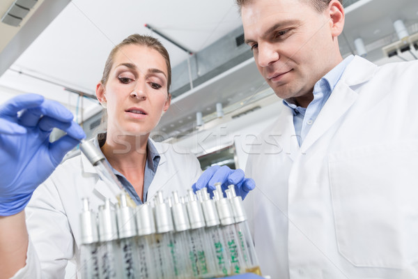 Scientist arrange samples for test in research lab Stock photo © Kzenon