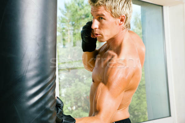 Martial Arts Punch Stock photo © Kzenon