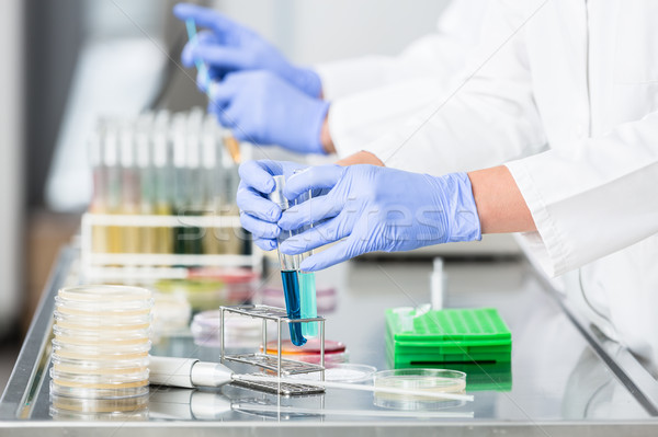 Researchers preparing samples for experiments in laboratory Stock photo © Kzenon