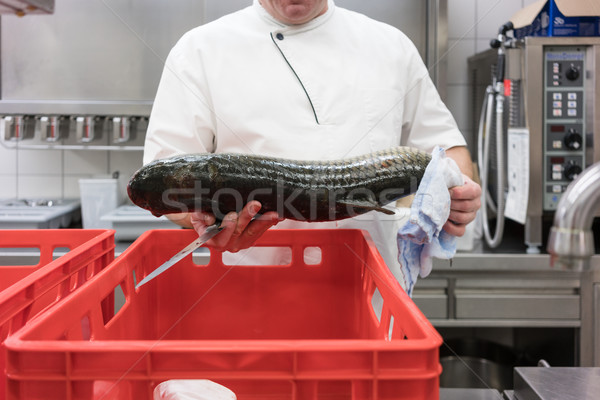 Chef in restaurant kitchen checking fresh fish delivery Stock photo © Kzenon