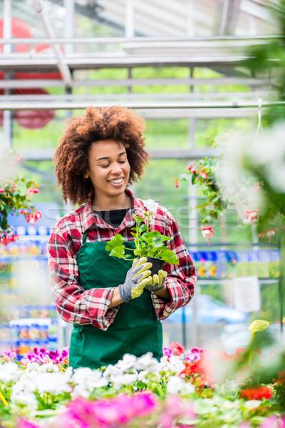 Dedicado mulher trabalhar florista Foto stock © Kzenon