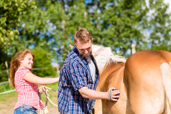 Couple combing horse on pony farm Stock photo © Kzenon