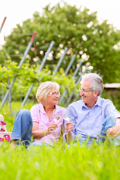 Zdjęcia stock: Szczęśliwy · piknik · pitnej · wina · starszy · para