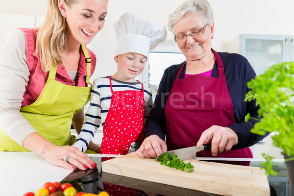 Granny showing old family recipe to grandson and daughter Stock photo © Kzenon