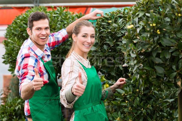 Jardineiro mercado jardim estufa Foto stock © Kzenon