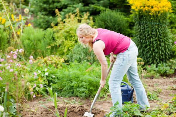 Nő kertész föld tavasz ásó gyártmány Stock fotó © Kzenon