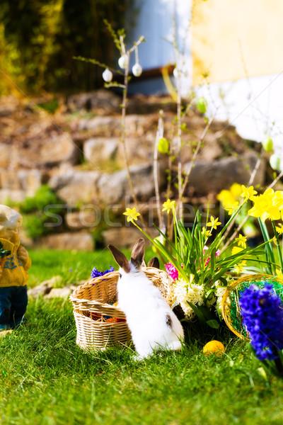 イースター 草原 バスケット 卵 女の子 イースターエッグハント ストックフォト © Kzenon