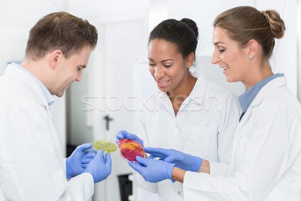 Group of food laboratory researchers comparing results Stock photo © Kzenon