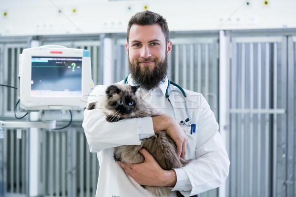 Lekarz weterynarii domowych lekarza kot pacjenta Zdjęcia stock © Kzenon