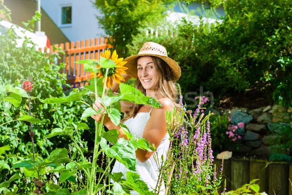 Woman gardener standing in the garden Stock photo © Kzenon