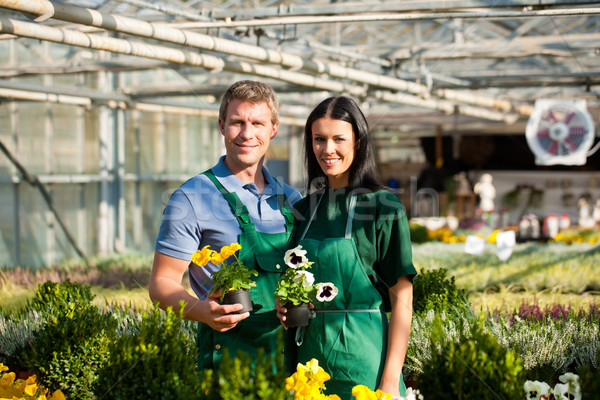 Female and male gardener in market garden or nursery Stock photo © Kzenon