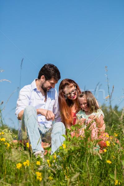 Family cuddling sitting on meadow Stock photo © Kzenon