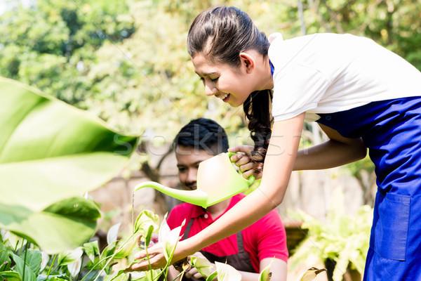 Genç kadın yeşil sulama bahçe mutlu ortak Stok fotoğraf © Kzenon