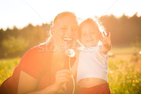 Criança prado dandelion semente mãe Foto stock © Kzenon