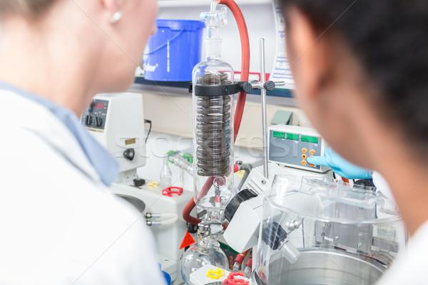 Naukowcy eksperyment badań laboratorium człowiek kobiet Zdjęcia stock © Kzenon