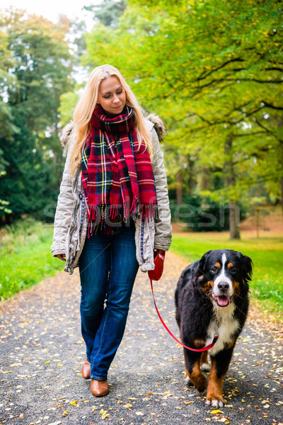 Woman walking the dog on leash in park Stock photo © Kzenon