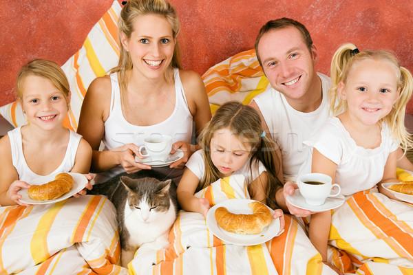 Família gato café da manhã cama cinco manhã Foto stock © Kzenon
