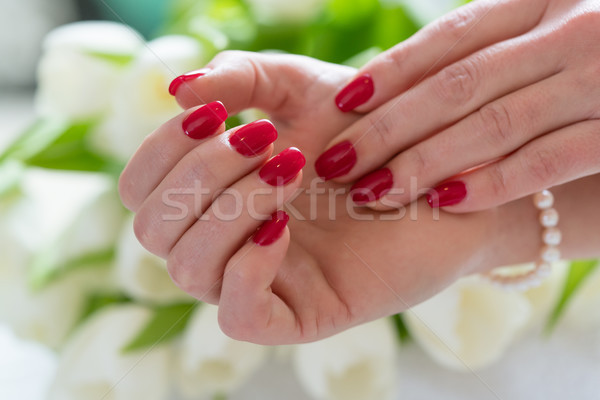 Close-up of the hands of a young woman with elegant red manicure Stock photo © Kzenon