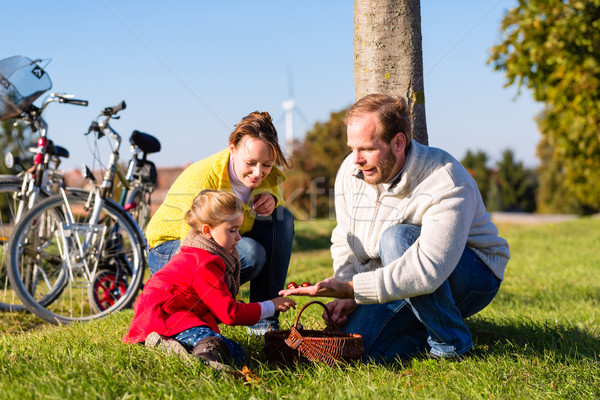Family collecting chestnuts on bicycle trip Stock photo © Kzenon