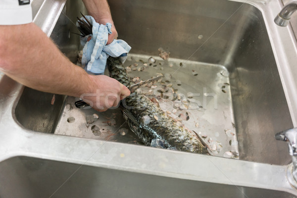 Restaurant Chef scaling carp fish in his kitchen Stock photo © Kzenon