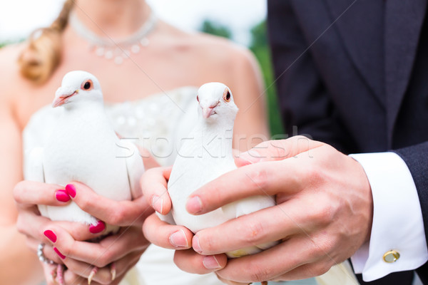 Para ślub biały kobieta Zdjęcia stock © Kzenon