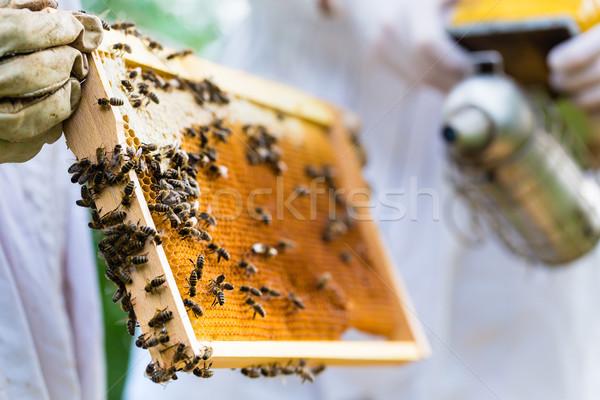 Sigara tiryakisi arılar tarak çerçeve kadın Stok fotoğraf © Kzenon