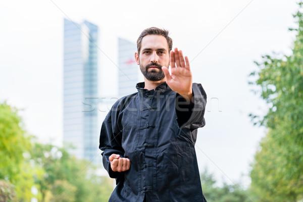 боевыми искусствами спортсмен каратэ город человека Сток-фото © Kzenon