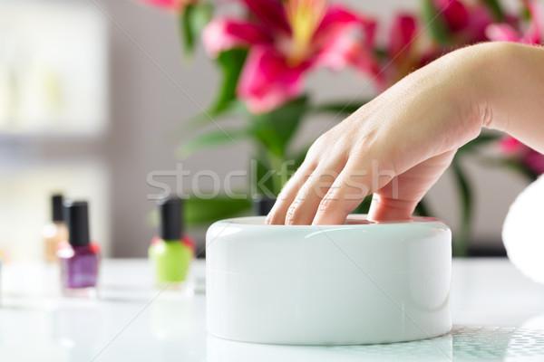 Stock fotó: Nő · manikűrös · manikűr · fürdik · kezek · virágok