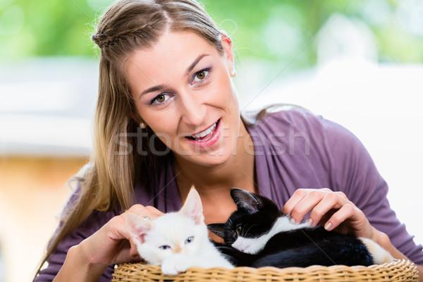 портрет счастливым Cute котят корзины Сток-фото © Kzenon