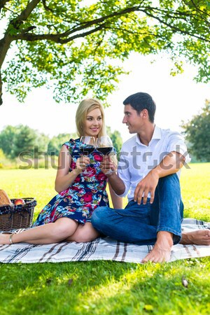 Picnic outdoors in summer Stock photo © Kzenon