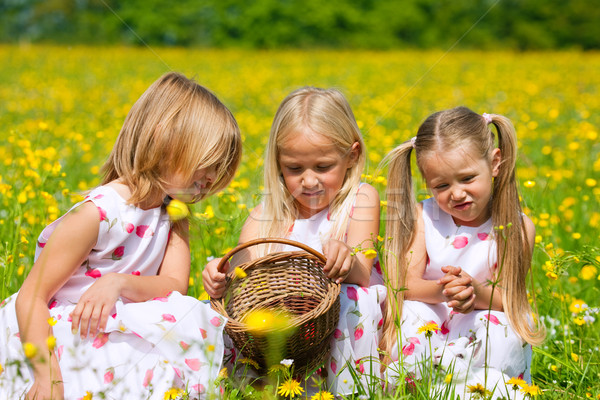 子供 イースターエッグハント 卵 草原 春 イースター ストックフォト © Kzenon
