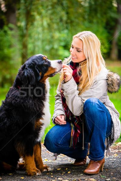 Woman walking the dog in fall park Stock photo © Kzenon
