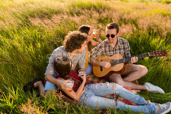 Young people sitting together in grass playing guitar Stock photo © Kzenon