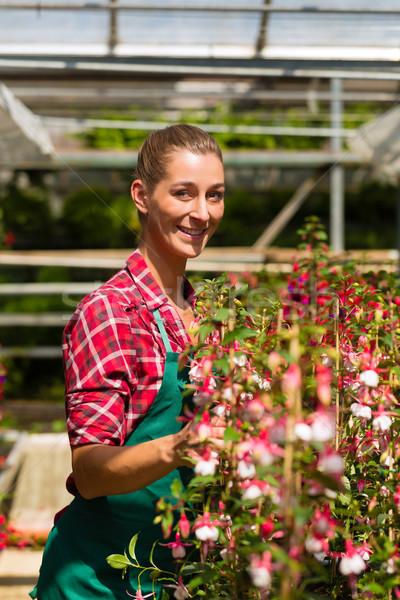 女性 植木屋 市場 庭園 花屋 ストックフォト © Kzenon