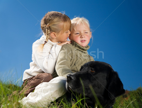 Sister, Whisper, Dog Stock photo © Kzenon