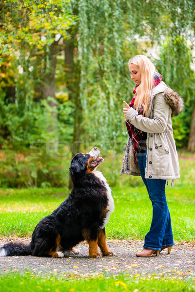 Girl in autumn park training her dog in obedience Stock photo © Kzenon