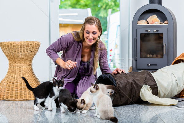 Woman with cute kittens and playing tunnel on floor Stock photo © Kzenon