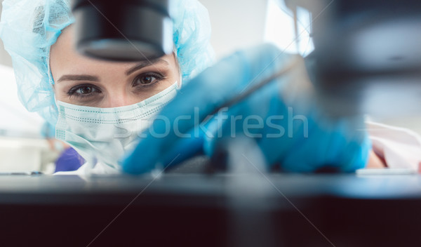 Stock photo: Doctor or lab technician adjusting needle to fertilize a human egg