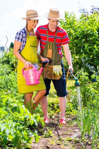Couple with hose watering garden Stock photo © Kzenon
